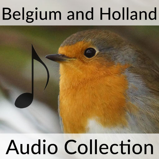Birds of Belgium and Holland Sound Collection