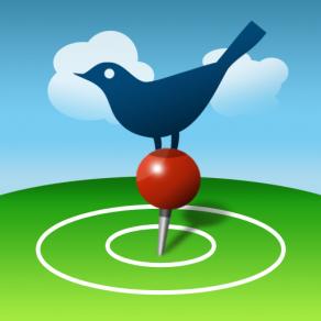 birdseye_512