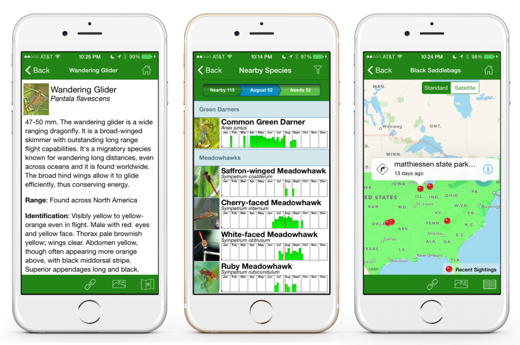 Several screenshots show features that will be available in the Dragonfly ID app.