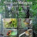 Birds of Peninsular Malaysia