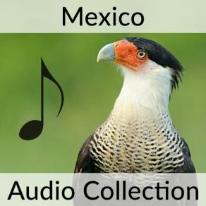 mexico-cover3