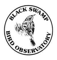 BSBO_Logo-2