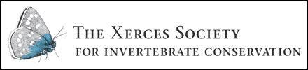 logo_xerces