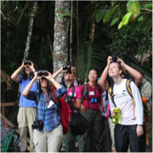 BirdsEye users in the Amazon