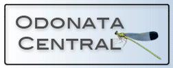 Odonoata_Central_logo