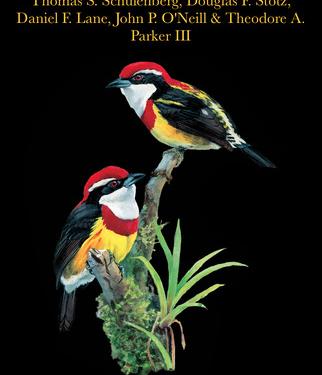 Birds of Peru cover