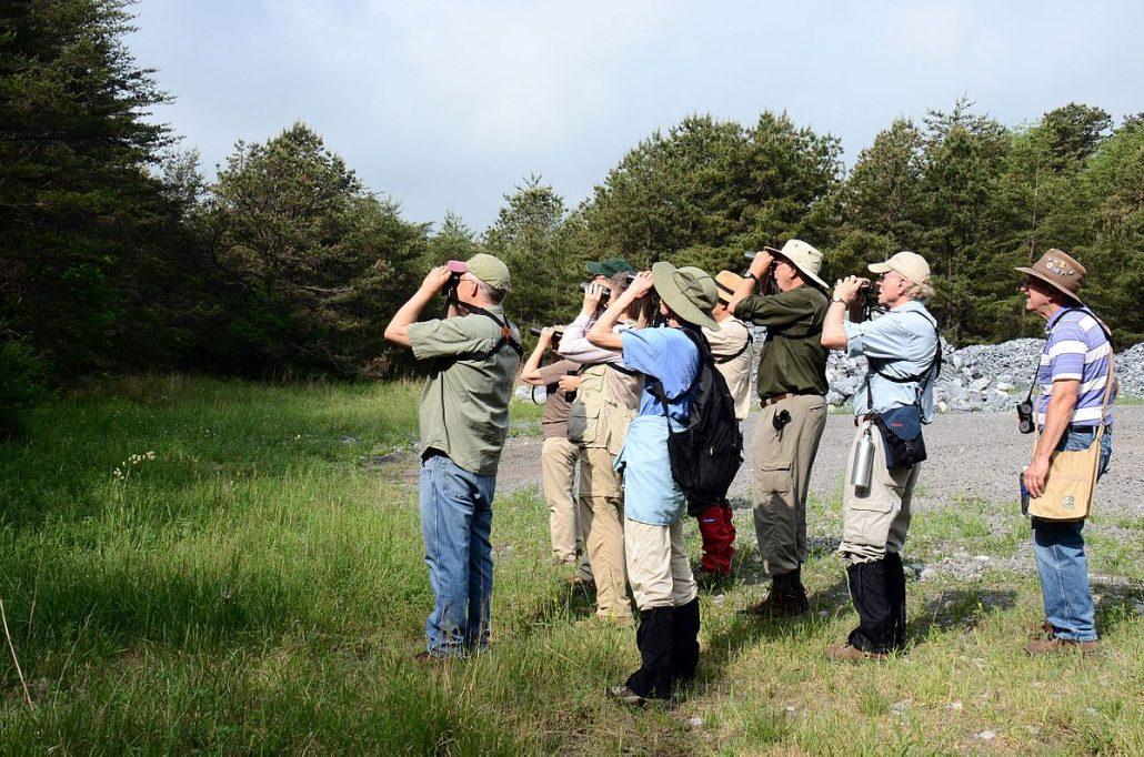 Birding and Birdwatching Festivals and Events   BirdsEye